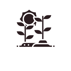 Ícone Sustentabilidade Limeira